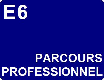 E6 : Parcours de professionnalisation