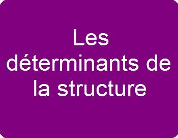 Les déterminants de la structure