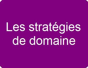 Les stratégies de domaine