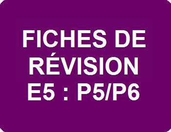 Fiches de révision E5 : P5/P6