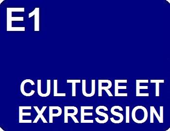 E1 : Culture et expression
